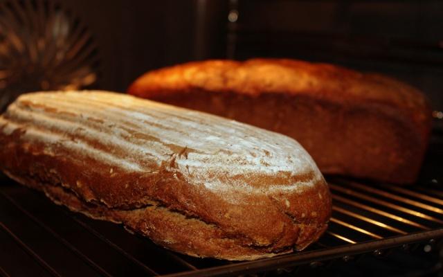 オーブンレンジ内で焼かれるパン
