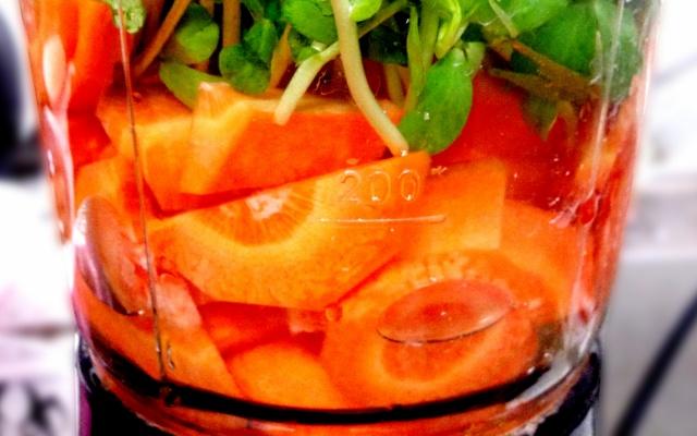 野菜が入ったミキサー